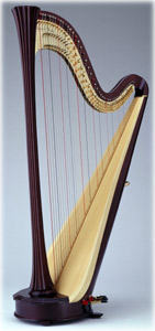 Picture of Style 2000 CG Harp