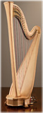 Picture of Arion SG Gold by Salvi Harp